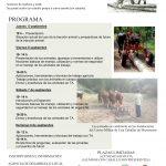 Taller de iniciación a la doma del caballo para tracción animal y enganche - Equaria Ibio 2019