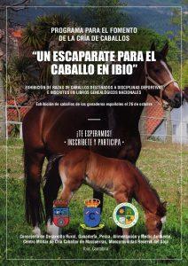 Programa para el Fomento de la cría de caballos