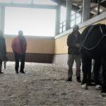 Taller Iniciación y Práctica en Tracción Animal